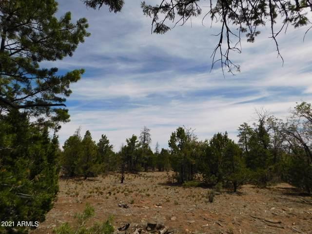8202 Mogollon Trail, Happy Jack, AZ 86024 (MLS #6253019) :: The Ellens Team