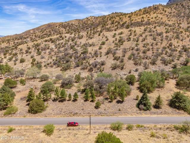 TBD E Carr Canyon Road, Hereford, AZ 85615 (MLS #6253027) :: Yost Realty Group at RE/MAX Casa Grande