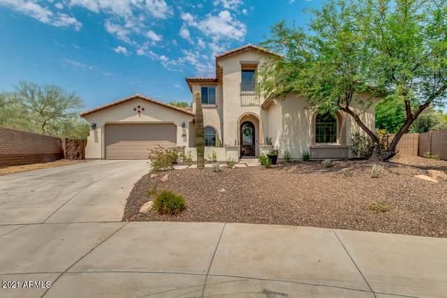 12548 W Milton Drive, Peoria, AZ 85383 (MLS #6253041) :: Maison DeBlanc Real Estate