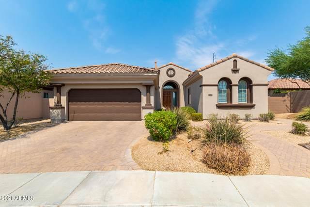 22520 N 38TH Place, Phoenix, AZ 85050 (MLS #6253043) :: Elite Home Advisors