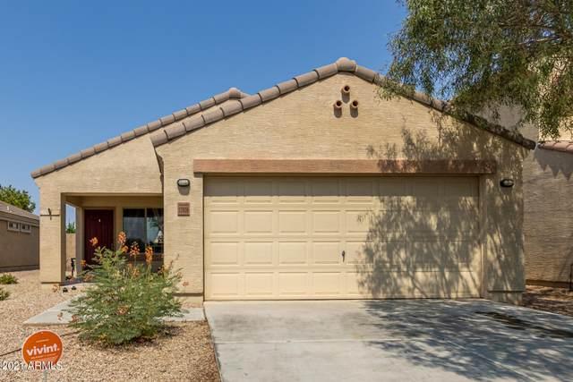 17928 N Fiano Drive, Maricopa, AZ 85138 (MLS #6253045) :: Dave Fernandez Team | HomeSmart