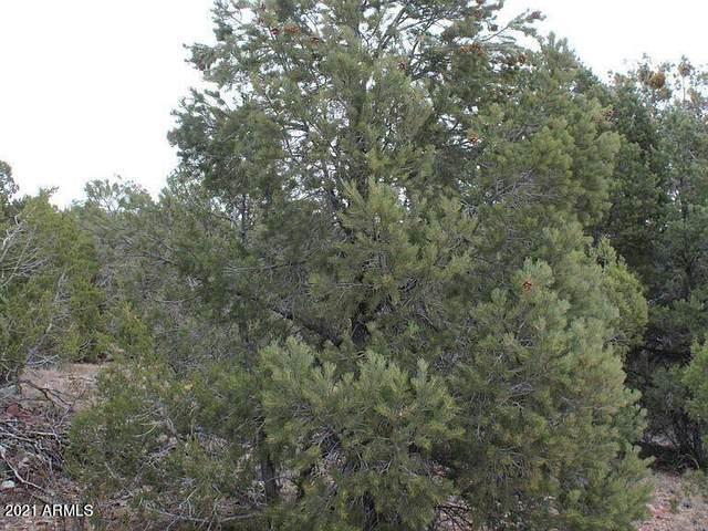 47517 N Mystic Pines Drive, Seligman, AZ 86337 (MLS #6253060) :: The Laughton Team