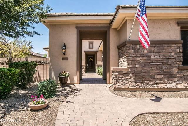 674 W Kaibab Place, Chandler, AZ 85248 (MLS #6253061) :: Yost Realty Group at RE/MAX Casa Grande