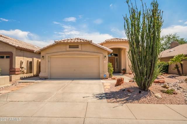 7249 E Black Rock Road, Scottsdale, AZ 85255 (MLS #6253069) :: CANAM Realty Group