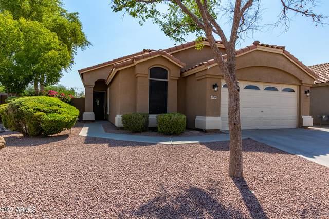 21769 N Kirkland Drive, Maricopa, AZ 85138 (MLS #6253103) :: Midland Real Estate Alliance