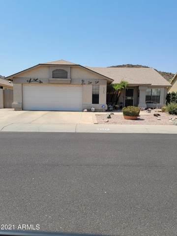 4328 W Marco Polo Road, Glendale, AZ 85308 (MLS #6253105) :: Midland Real Estate Alliance