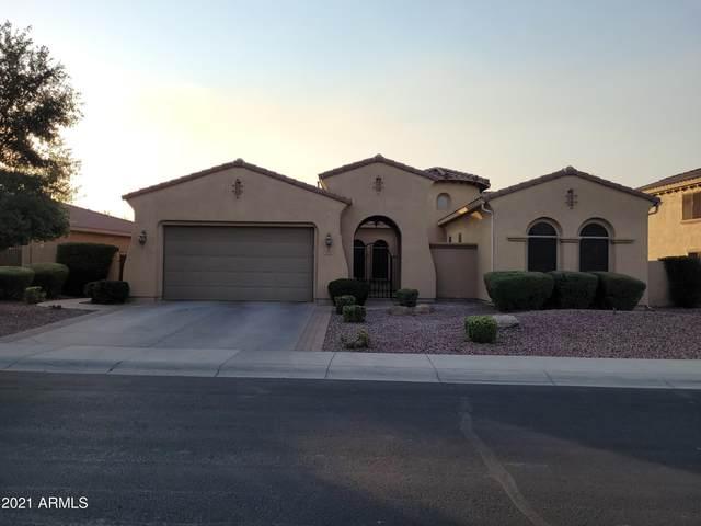 3752 E Nolan Drive, Chandler, AZ 85249 (MLS #6253121) :: Executive Realty Advisors