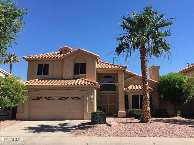 3338 E Glenhaven Drive, Phoenix, AZ 85048 (MLS #6253140) :: Devor Real Estate Associates