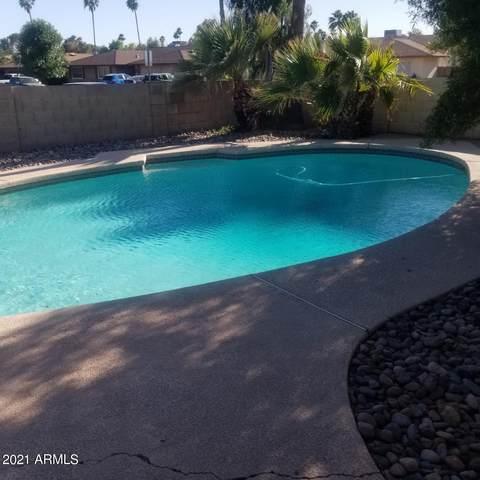 1103 E Watson Drive, Tempe, AZ 85283 (MLS #6253151) :: The Ellens Team