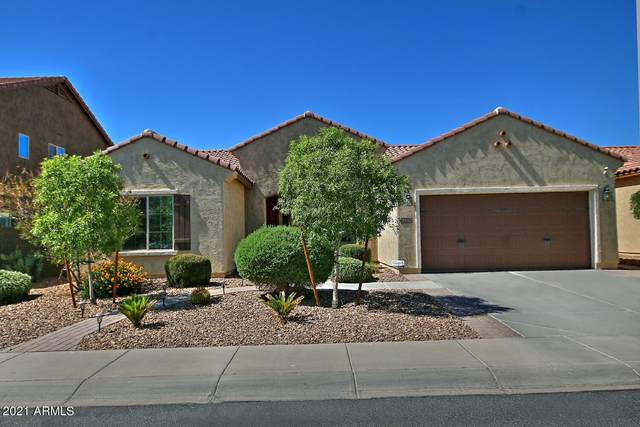 7552 W Georgetown Way, Florence, AZ 85132 (MLS #6253211) :: Keller Williams Realty Phoenix