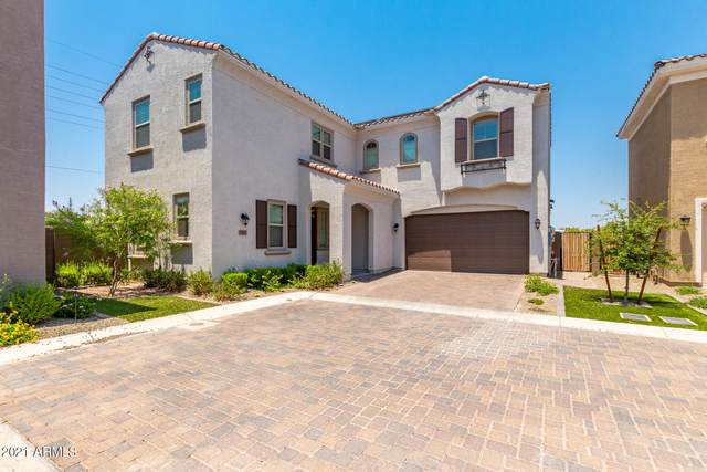 17242 N 9TH Place, Phoenix, AZ 85022 (MLS #6253223) :: Yost Realty Group at RE/MAX Casa Grande