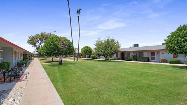 14006 N Newcastle Drive, Sun City, AZ 85351 (MLS #6253228) :: The Daniel Montez Real Estate Group