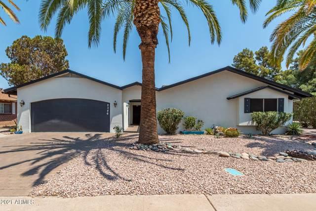 8346 E Devonshire Avenue, Scottsdale, AZ 85251 (MLS #6253230) :: Yost Realty Group at RE/MAX Casa Grande