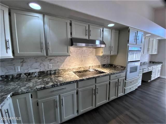 1710 S Yucca Street, Chandler, AZ 85286 (MLS #6253231) :: Keller Williams Realty Phoenix