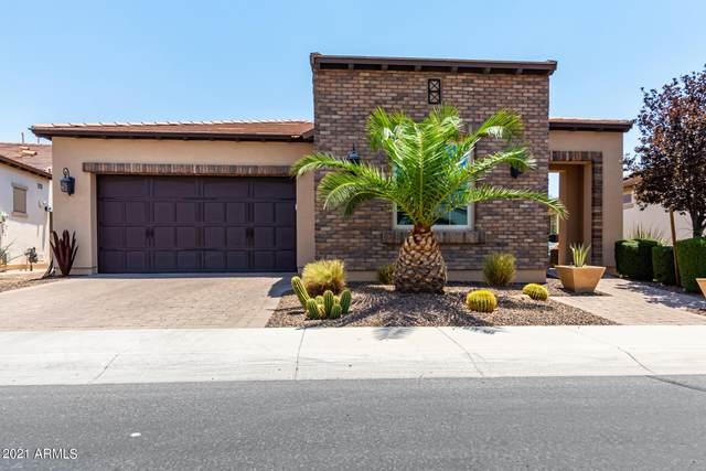 1549 E Verde Boulevard, San Tan Valley, AZ 85140 (MLS #6253233) :: Yost Realty Group at RE/MAX Casa Grande