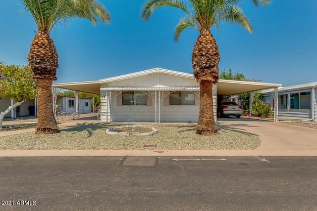 3160 E Main Street #73, Mesa, AZ 85213 (MLS #6253244) :: Walters Realty Group