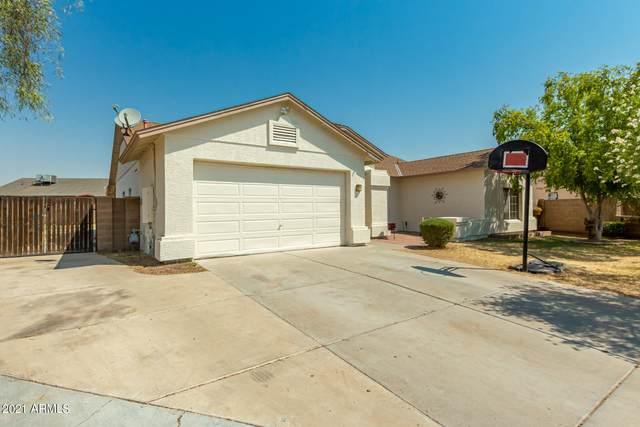 10144 W Denton Lane, Glendale, AZ 85307 (MLS #6253266) :: Yost Realty Group at RE/MAX Casa Grande