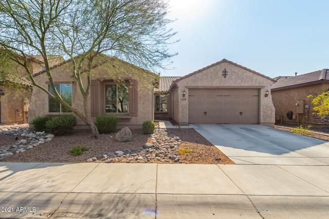 25548 N 104TH Drive, Peoria, AZ 85383 (MLS #6253291) :: The Daniel Montez Real Estate Group