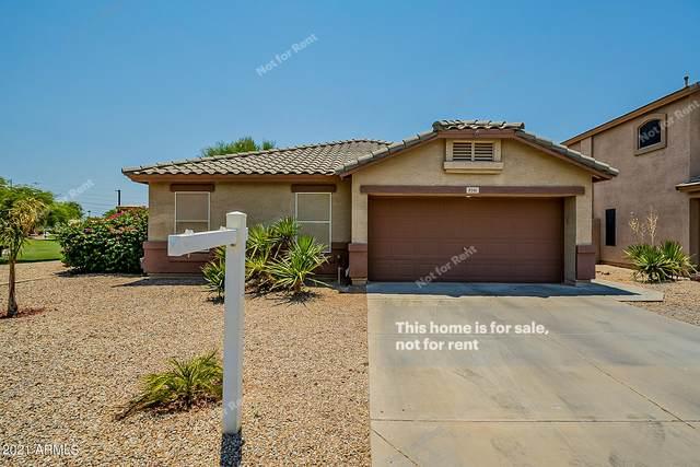 9341 E Plata Avenue, Mesa, AZ 85212 (MLS #6253294) :: The Laughton Team