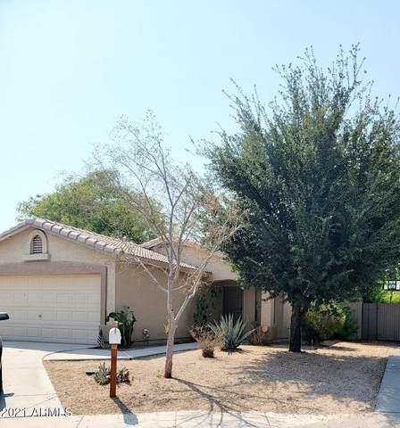 405 S Alva Street, Buckeye, AZ 85326 (MLS #6253300) :: Keller Williams Realty Phoenix