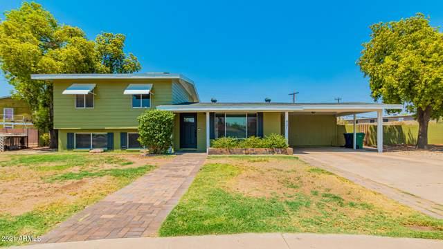 431 S Ridge, Mesa, AZ 85204 (MLS #6253306) :: Yost Realty Group at RE/MAX Casa Grande