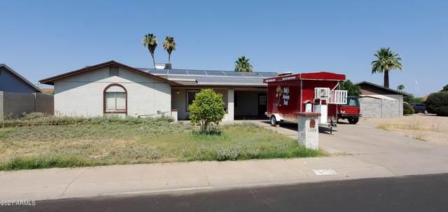 11026 N 40TH Avenue, Phoenix, AZ 85029 (MLS #6253331) :: Keller Williams Realty Phoenix