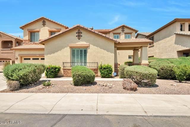 2428 E Iris Drive, Chandler, AZ 85286 (MLS #6253338) :: Arizona Home Group