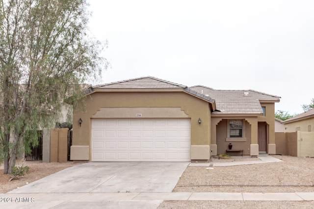 2769 E Morenci Road, San Tan Valley, AZ 85143 (#6253349) :: Long Realty Company