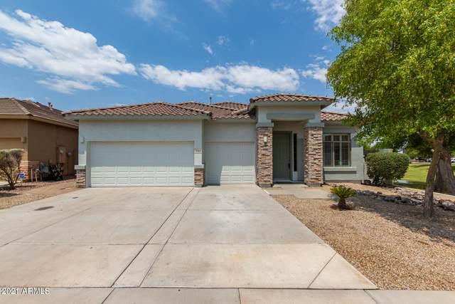 3368 W Morgan Lane, Queen Creek, AZ 85142 (#6253386) :: Long Realty Company