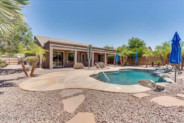 21725 E Calle De Flores, Queen Creek, AZ 85142 (MLS #6253397) :: The Helping Hands Team