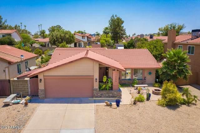 2009 E Evans Drive, Phoenix, AZ 85022 (MLS #6253405) :: Conway Real Estate