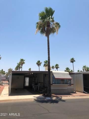 3710 S Goldfield Road #347, Apache Junction, AZ 85119 (MLS #6253433) :: Keller Williams Realty Phoenix