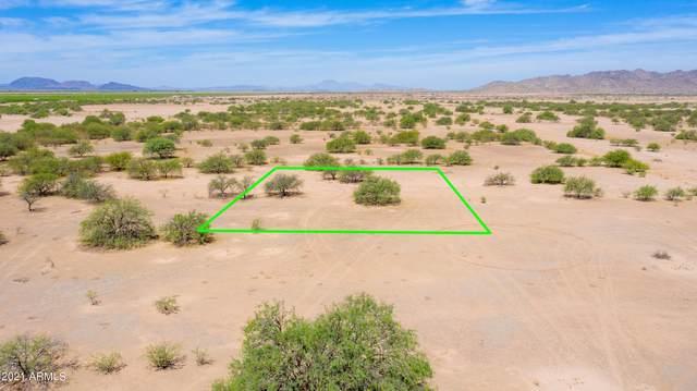 3215 N Grafton Drive, Eloy, AZ 85131 (MLS #6253500) :: Midland Real Estate Alliance