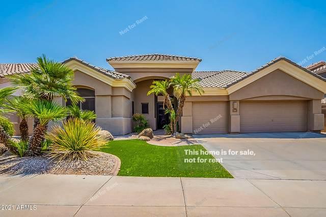 283 E Ashurst Drive, Phoenix, AZ 85048 (MLS #6253501) :: Midland Real Estate Alliance