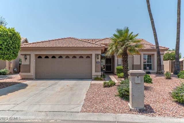 14837 W Merrell Street, Goodyear, AZ 85395 (MLS #6253517) :: Midland Real Estate Alliance