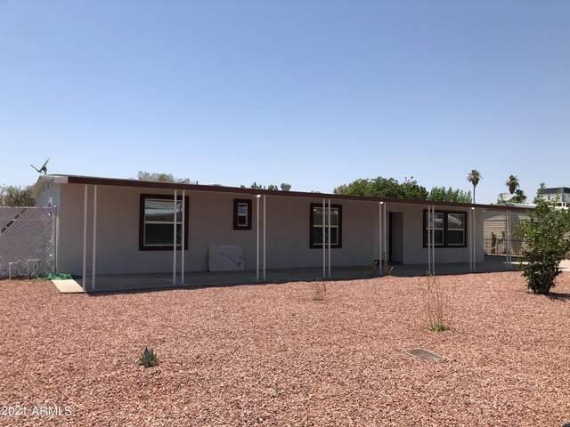 6810 W Sherri Jean Lane, Peoria, AZ 85382 (MLS #6253543) :: Midland Real Estate Alliance