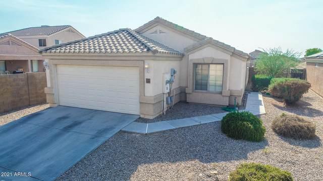 23968 N Nectar Avenue, Florence, AZ 85132 (MLS #6253548) :: Arizona 1 Real Estate Team
