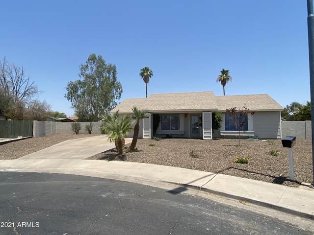 829 E Hillview Circle, Mesa, AZ 85203 (MLS #6253562) :: Arizona Home Group