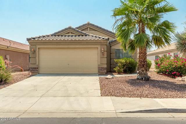 1680 S 217TH Lane, Buckeye, AZ 85326 (MLS #6253575) :: Keller Williams Realty Phoenix