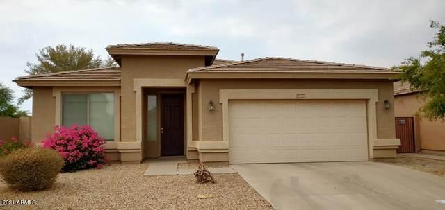 16234 W Winchcomb Drive, Surprise, AZ 85379 (MLS #6253579) :: Keller Williams Realty Phoenix