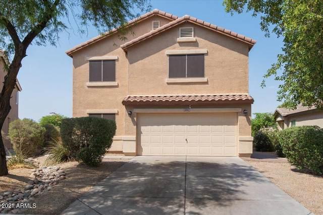 28961 N Coal Avenue, San Tan Valley, AZ 85143 (MLS #6253586) :: Dijkstra & Co.