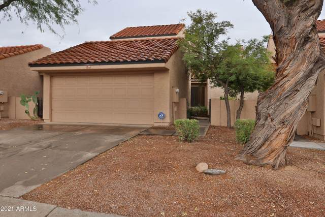 324 E Lilac Drive, Tempe, AZ 85281 (MLS #6253622) :: The Everest Team at eXp Realty