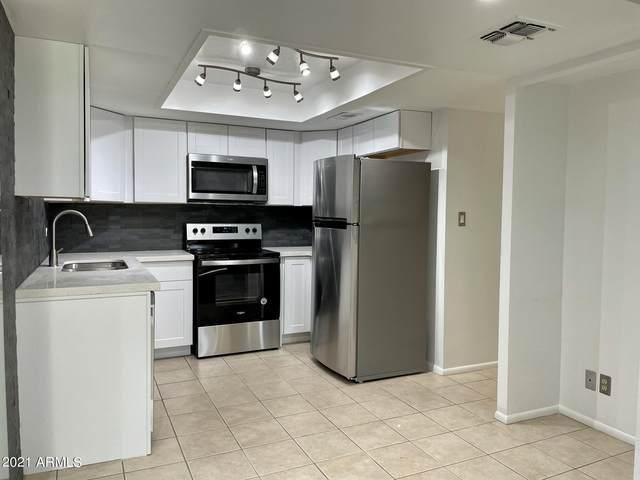 7910 E Camelback Road #206, Scottsdale, AZ 85251 (MLS #6253677) :: Yost Realty Group at RE/MAX Casa Grande