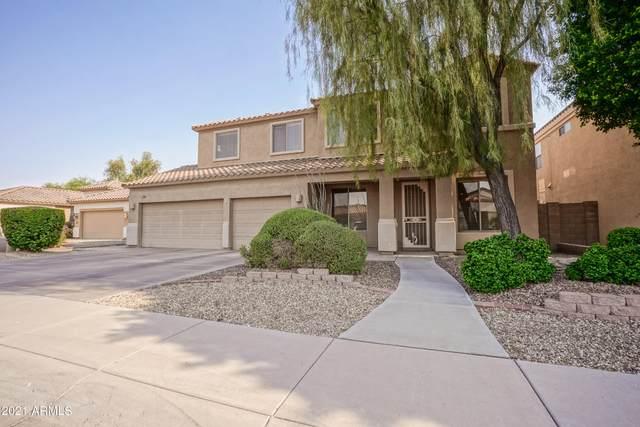 13044 W Estero Lane, Litchfield Park, AZ 85340 (MLS #6253682) :: Yost Realty Group at RE/MAX Casa Grande