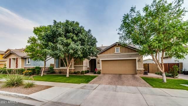 7351 E Plata Avenue, Mesa, AZ 85212 (MLS #6253714) :: Conway Real Estate