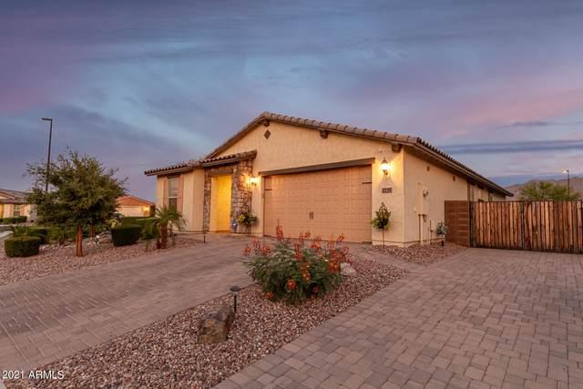2737 E Daniel Drive, Gilbert, AZ 85298 (MLS #6253749) :: Yost Realty Group at RE/MAX Casa Grande