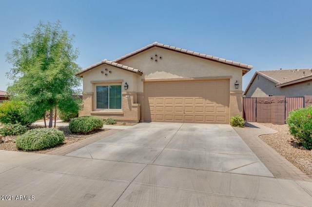41354 N Soap Berry Street, Queen Creek, AZ 85140 (MLS #6253752) :: Yost Realty Group at RE/MAX Casa Grande