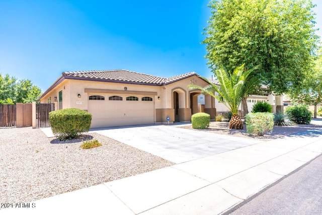 3107 E Ridgewood Lane, Gilbert, AZ 85298 (MLS #6253764) :: Dijkstra & Co.