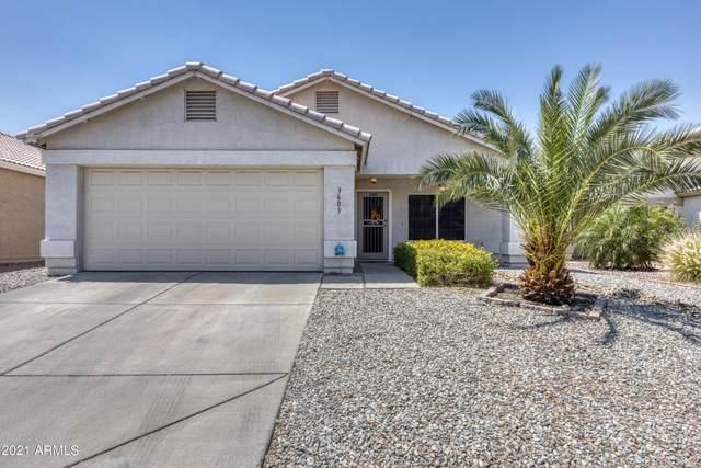3603 W Via Del Sol Drive, Glendale, AZ 85310 (MLS #6253784) :: Yost Realty Group at RE/MAX Casa Grande