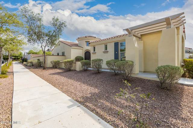 20758 W Delaney Drive, Buckeye, AZ 85396 (MLS #6253821) :: Yost Realty Group at RE/MAX Casa Grande